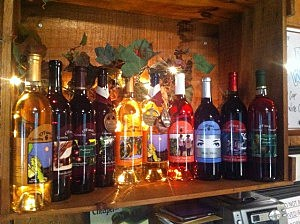 The collection of wines produced at O'Farrell Country Vineyards