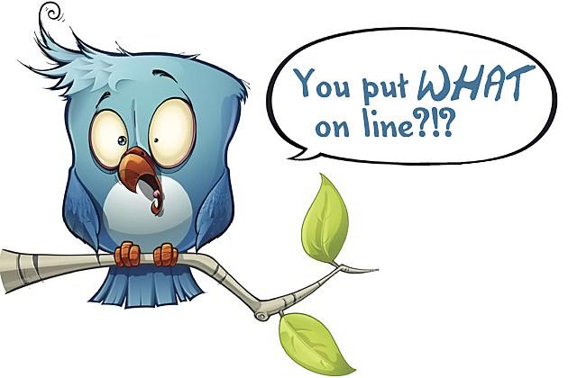 Shocked bluebird