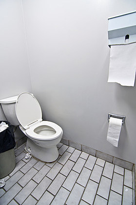 Toilet - Brian Guest/ThinkStock